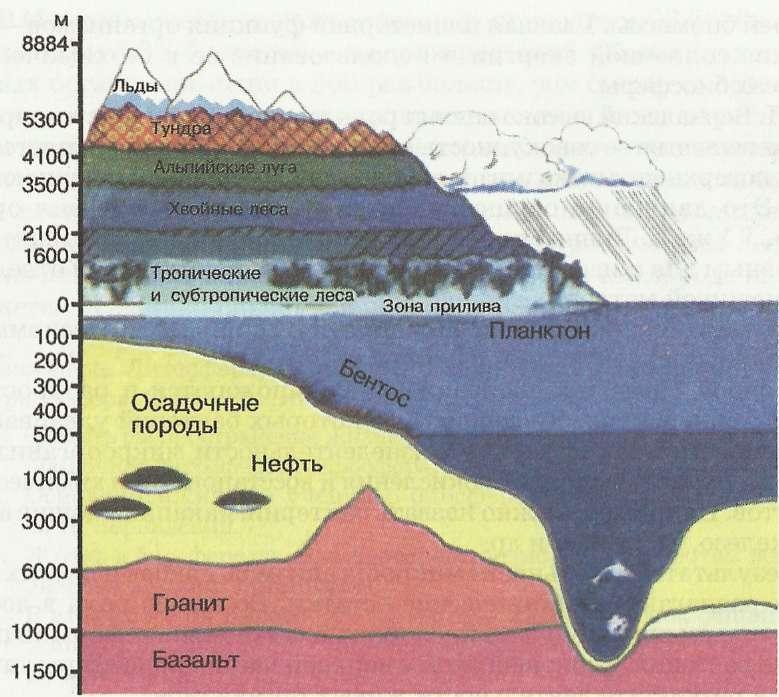 Пределы жизни в биосфере